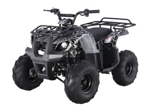 BLACK SPIDER ATA 125 D