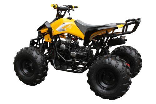 3125C yellow