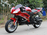 Ninja 49 RED